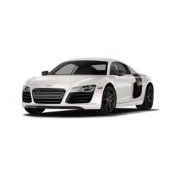 Getriebereparatur Audi R8...